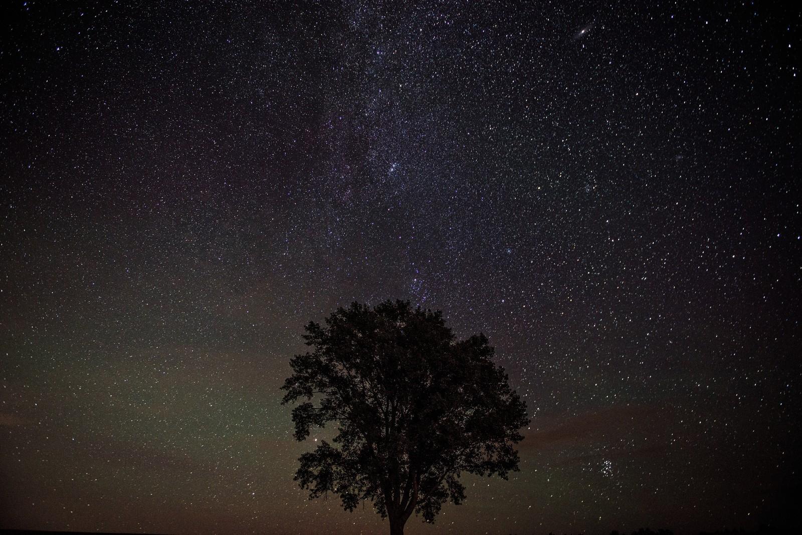 野呂有我「星を捕る人」